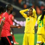 ZIFA, Coaches Can Not Serve Two Masters At Once
